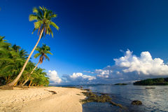 tropiskt strandparadis Royaltyfri Bild