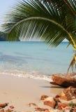tropiskt strandparadis Arkivbilder