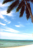 tropiskt strandparadis Royaltyfria Foton