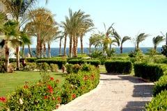 tropiskt trädgårds- hotell royaltyfria foton