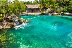 Tropiskt vatten på djungeln i Yucatan, Mexico royaltyfri fotografi