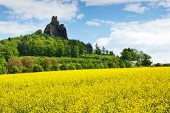 Trosky roszuje, Artystyczny raju region, republika czech, Europa Zdjęcie Stock