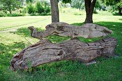 Trostianets park, Sumi region, Ukraine Stock Photography