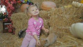 Troszkę bawić się z żywymi królikami dziewczyny obsiadanie na słomie zbiory