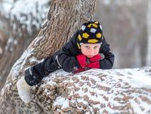 Troszkę chłopiec lying on the beach na wielkim spadać drzewie w zimie obrazy stock