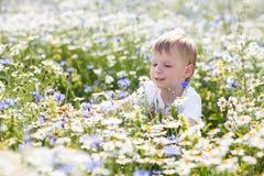 Troszkę chłopiec spacery Obraz Royalty Free