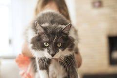 Troszkę dziewczyna i owłosiony kot abstrakcjonistycznego zdjęciu tła ramowej rocznik jednorodnego kosmos kopii obraz royalty free