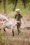 Troszkę karmi kózki z zieloną trawą w wiosce blisko pióra chłopiec w słomianym kapeluszu zdjęcie royalty free