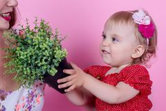 Troszkę trzyma garnek z rośliną w ona dziewczyna ręki zdjęcia stock