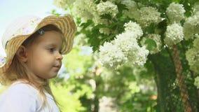 Troszkę wdycha woń kwiaty w ogródzie na słonecznym dniu dziewczyna zbiory