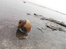 Troszkę na morzu Zdjęcia Royalty Free
