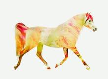 Trot de fonctionnement de cheval, double exposition rouge jaune Images stock