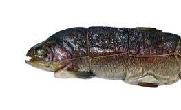 Trota affumicata calda del pesce isolata immagini stock libere da diritti