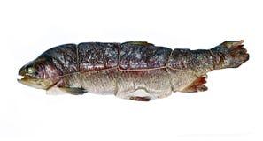 Trota affumicata calda del pesce isolata fotografia stock libera da diritti