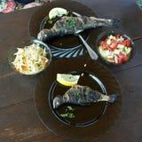 Trota DELIZIOSA con insalata per la cena dopo una riuscita pesca fotografia stock