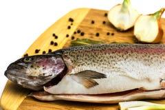 Trota di color salmone fresca Immagini Stock