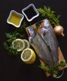 Trota iridea del pesce fresco con i verdi immagine stock libera da diritti