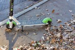 'trotinette' do cal com folhas de outono imagem de stock royalty free