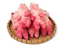Trotones crudos del cerdo imagen de archivo libre de regalías