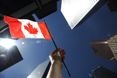 Trots Canadees royalty-vrije stock foto's