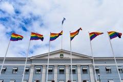 Trotsvlaggen met de vlag van Finland stock foto's