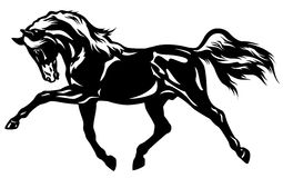 Trotting horse. Black white side view image Royalty Free Stock Photography