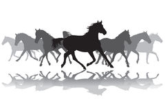 Trotting horses silhouette background illustration Stock Images