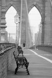 Trotto del ponte di Brooklyn Fotografia Stock Libera da Diritti