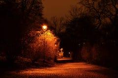 Trottoar i den mörka natten parkerar Royaltyfri Fotografi