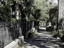 Trottoar i Wilmingtons historiska område royaltyfria foton