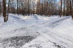 Trottoarer i Ostankinoen parkerar moscow Royaltyfria Foton