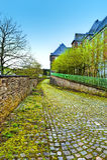 Trottoir couvert de la mousse en Belgique Photographie stock libre de droits