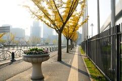 Trottoir dans la région d'expo de Changhaï Chine Photographie stock libre de droits