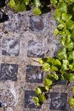 Trottoir de bloc en verre Image libre de droits