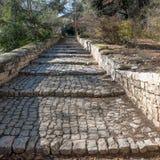 Trottoir de pierre de pavé d'étapes Images stock