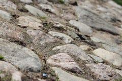 Trottoir en pierre avec de la mousse Photos stock
