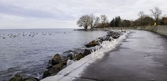 Trottoir et roches glacials sur le rivage du lac Ontario photos libres de droits