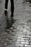 Trottoir humide Images stock
