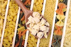 Trottole pasta Stock Photography