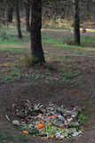 Trou au sol de compost photo libre de droits