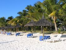 Trou aux Biches Beach. White sand and coconut trees stock photos