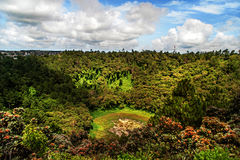 Trou Aux Cerfs Volcano crater in Mauritius. Trou Aux Cerfs (also known as Murr's Volcano) dormant volcano crater in Mauritius, Curepipe at sunny day Royalty Free Stock Images