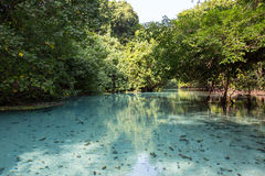 Trou bleu dans le paradis, Vanuatu photographie stock libre de droits