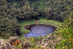 Trou Cerfs aux. - Isla Mauricio fotografía de archivo libre de regalías