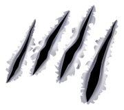 Trou d'éraflure de griffe de monstre Photo libre de droits