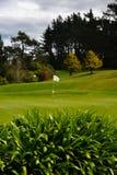 Trou d'inscription de drapeau de terrain de golf du Nouvelle-Zélande images libres de droits