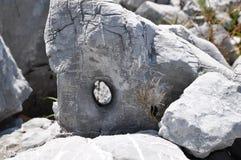Trou dans la roche photo libre de droits