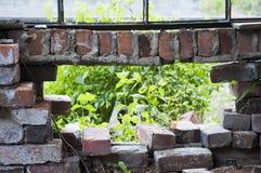 Trou dans les briques Photo stock