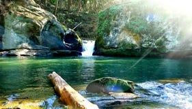 Trou de bain caché par système de parc de Bellingham photo libre de droits