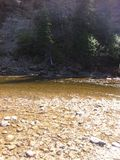 Trou de pêche sur la rivière de Nordegg Images libres de droits